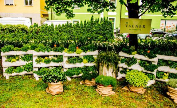 65 - Valner Vrtnarstvo