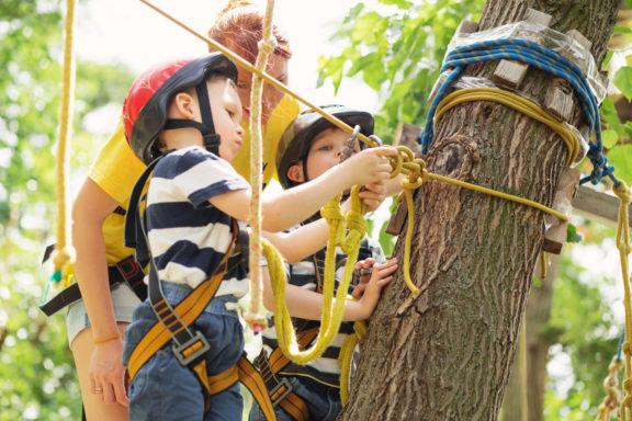plezanje-po-drevesih
